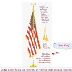 The Shocking Secret About Court Room Flags – It's A Warning!